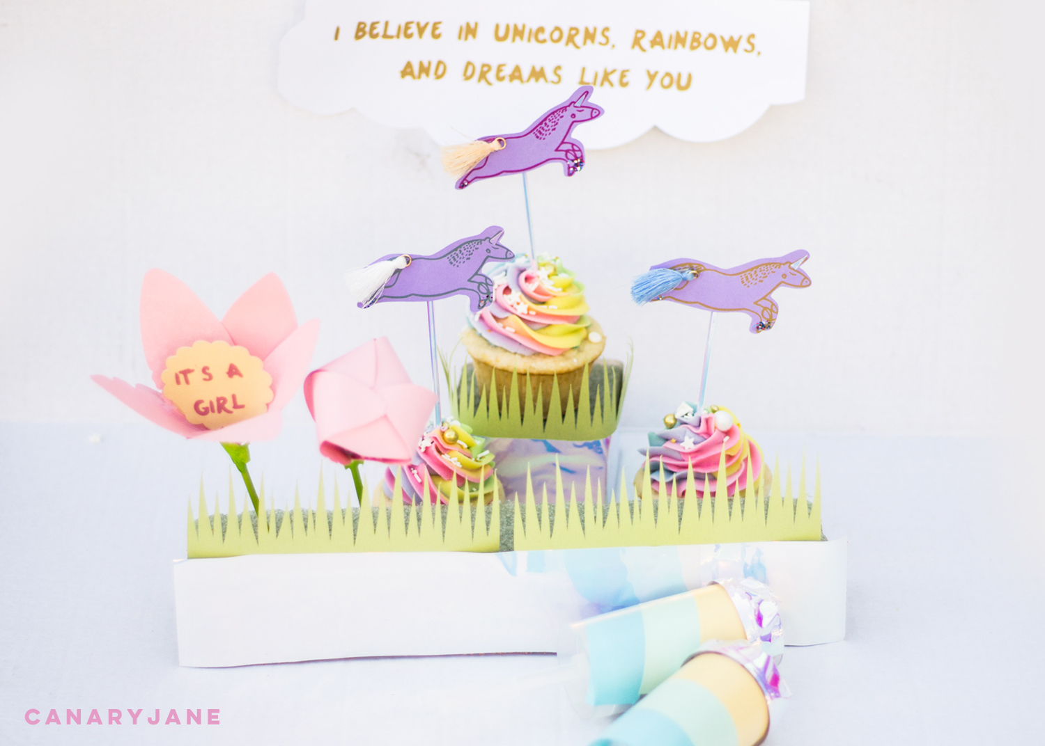 unicorn rainbow baby gender reveal