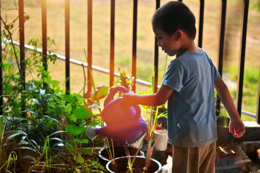 kid friendly gardneing