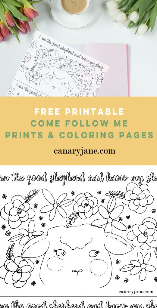 Come Follow Me Free Printables & Lesson Ideas - May - Canary