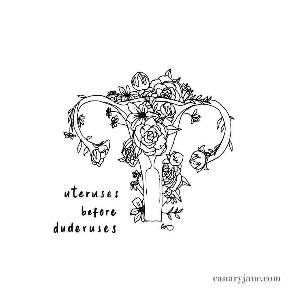 I love a good meme so I figured I pair my illustrations with some of my favorite Valentine sayings. Grab these Valentine graphics as Instagram posts or coloring pages. Printing instructions are found at the bottom if you need help.  If you do share on Instagram be sure to tag me and I will repost! Happy Valentines Day! Uterusus before Duderuses. Tacos and Love is All I Need . Don;t Give Me Flowers, Give Me Plants - Funny Sayings