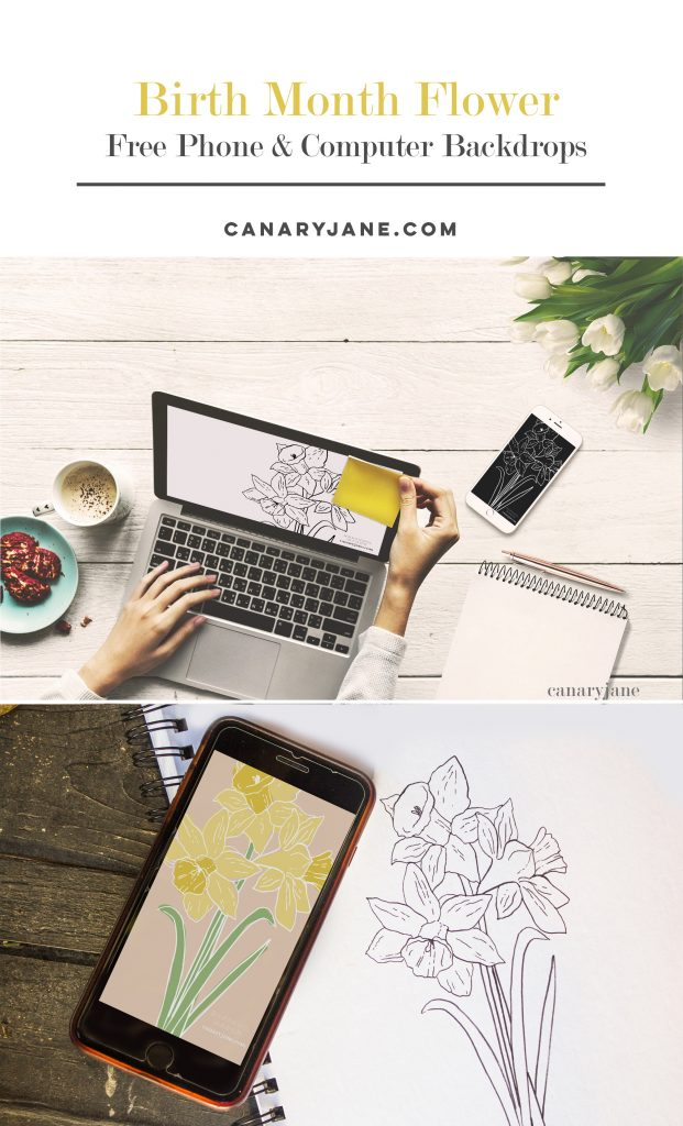 Download these free birth flower phone and computer desktop backgrounds for any month of the year! There are also free birth month flower coloring pages!
