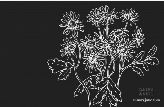 April Daisy Birth Flower Background & Coloring Page