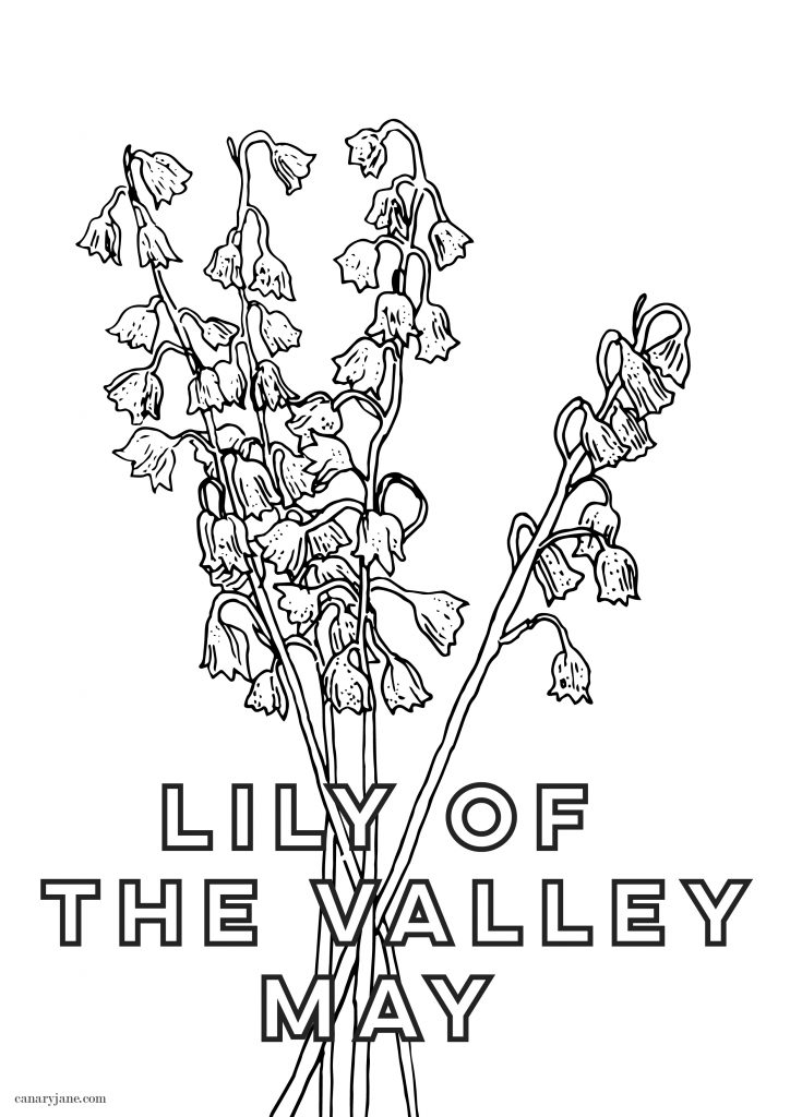 This month's birth flower illustration is up and it is the Lily of the Valley. I've also created a free May birth month flower coloring page too. You can save these free birth flower  illustrations for your phone and computer desktop backgrounds.
