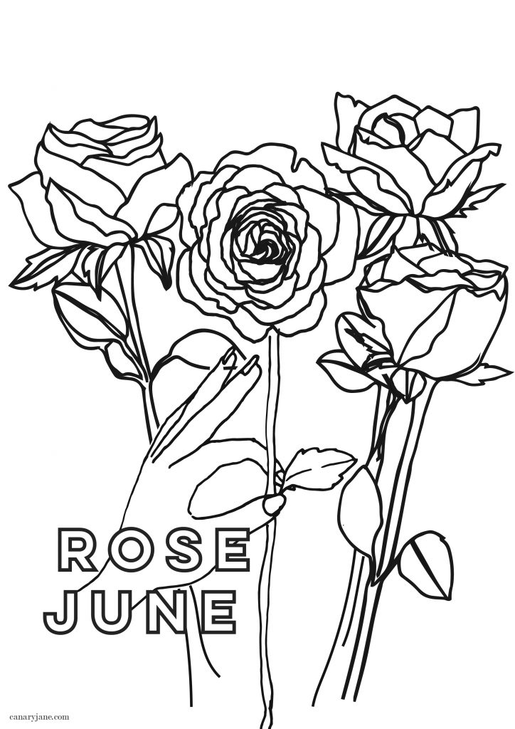 Its June and I have your free birth flower coloring page and background for you! With Covid and honoring the BLM movement on my instagram I got behind this month, so please forgive me. But here it is and before the end of the month! Print off these freebies today!