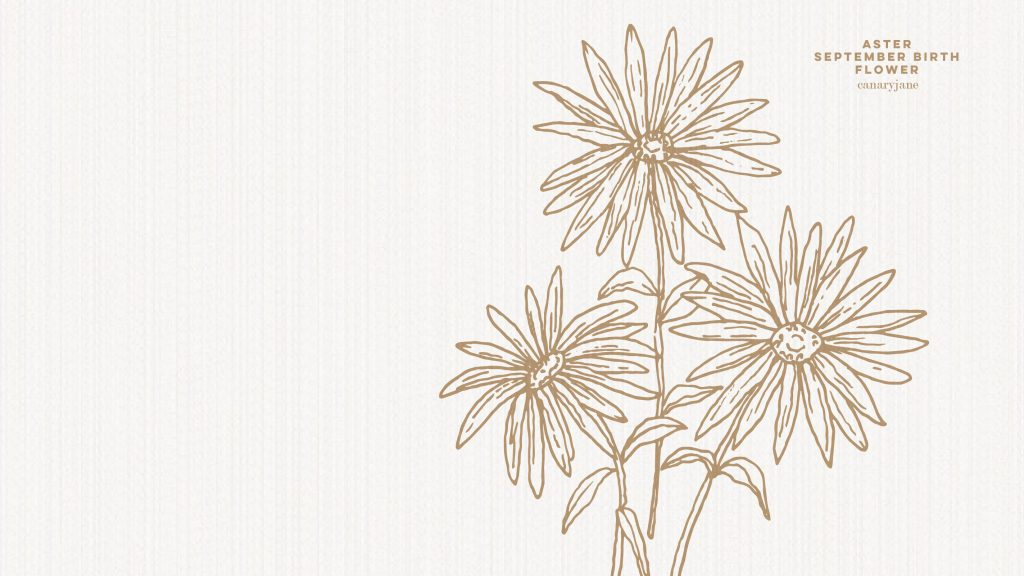 Grab this free printable and free download for the Aster September birth flower. You can put it as your phone background or color away.
