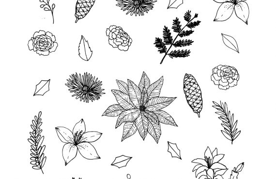Beautiful Botanicals of Christmas Free Coloring Pages and Countdown