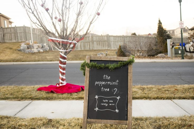How to Make a Candy Cane Peppermint Tree
