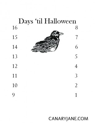 halloween countdown bird