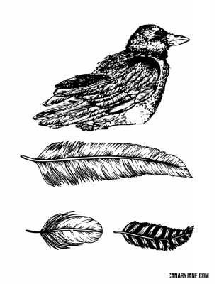 halloween printable bird feathers